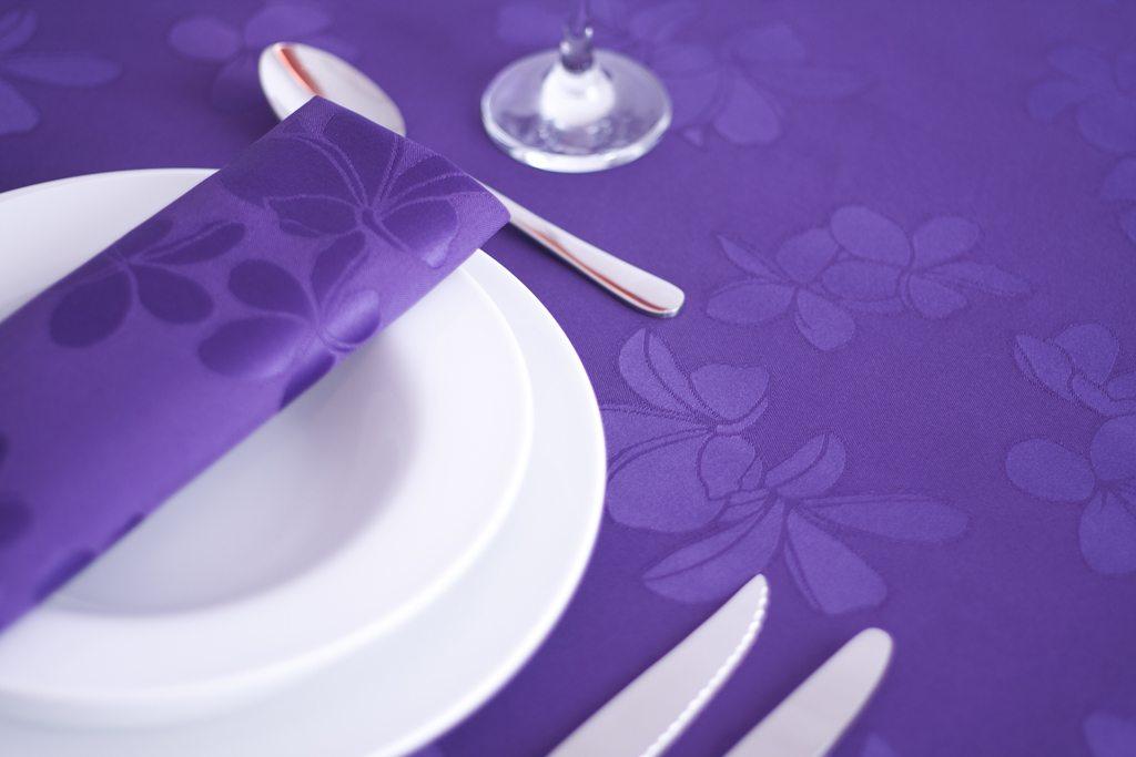 Cosmos Purple